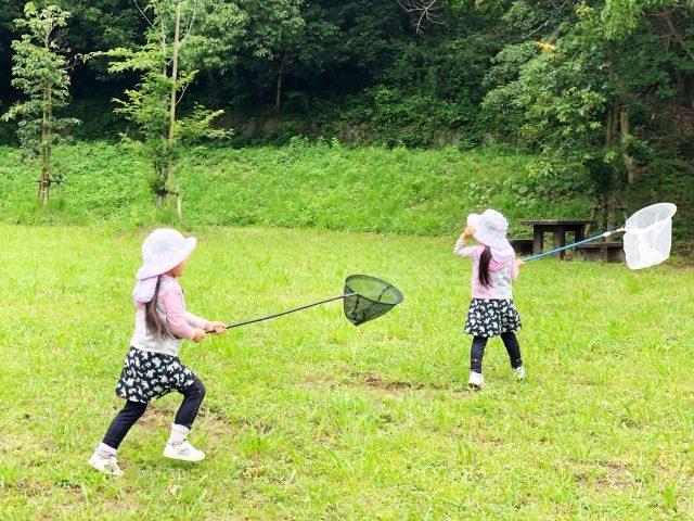 昆虫好きで野原で虫取りを楽しむ女の子達